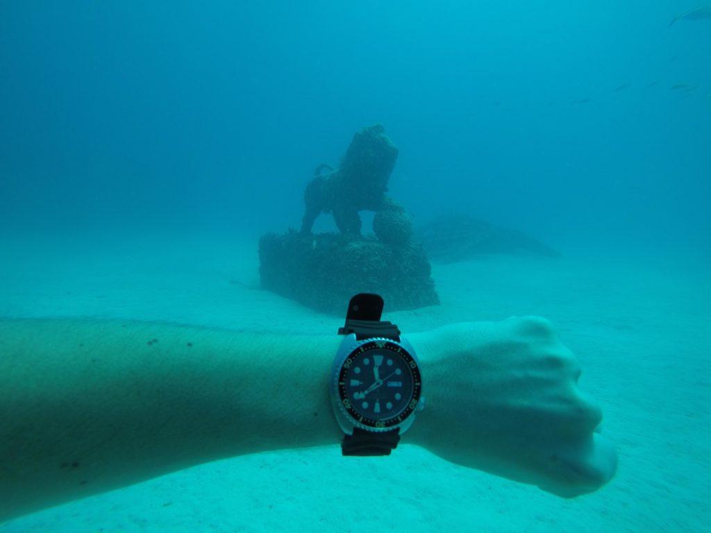 Seiko under water
